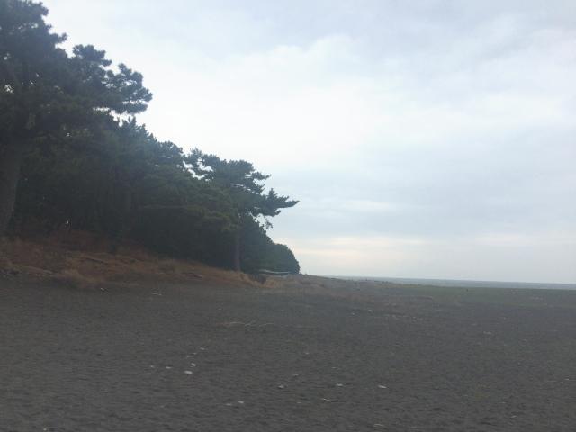 ぶらり旅「静岡県・静岡市・富士市」2016年3月19日~21日